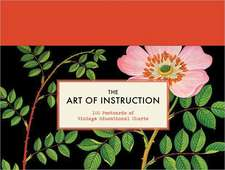 The Art of Instruction