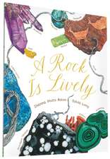 A Rock Is Lively:  A Guide to Pregnancy and Birth for Dads-To-Be