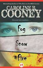Fog, Snow, Fire