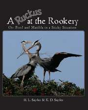 A Ruckus at the Rookery