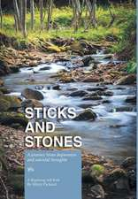 Sticks and Stones - A Journey from Depression and Suicidal Thoughts