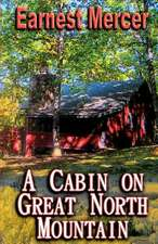 A Cabin on Great North Mountain