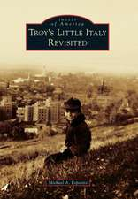 Troy's Little Italy Revisited