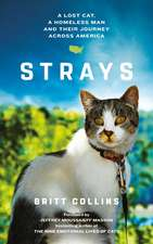 Strays: The True Story of a Lost Cat, a Homeless Man and Their Journey Across America