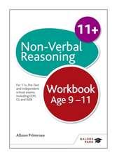 Non-Verbal Reasoning Workbook