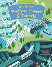 SEE INSIDE BRIDGES TUNNELS AND TOWERS