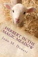 Herbert in the Magic Meadow