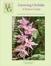 Growing Orchids - A Picture Guide:  How We Grow Orchids in Our Hawaii Garden