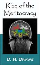 Rise of the Meritocracy:  Chinese Version