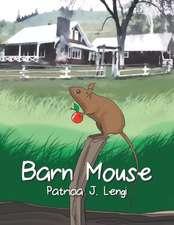 Barn Mouse