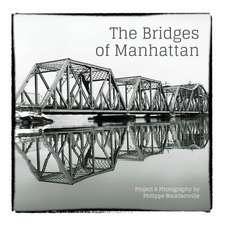 The Bridges of Manhattan