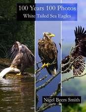 100 Years 100 Photos White Tailed Sea Eagles