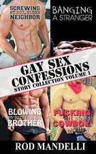 Gay Sex Confessions Story Collection Volume 1