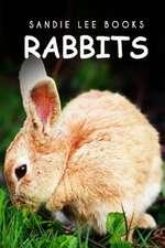 Rabbits - Sandie Lee Books