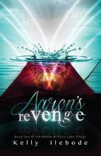 Aaron's Revenge Book Two of the Manor at Echo Lake Trilogy