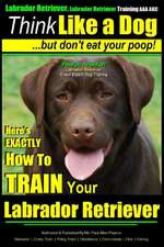 Think Like a Labrador, But Don't Eat Your Poop! - Labrador Breed Expert Dog Training -
