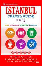 Istanbul Travel Guide 2014