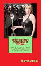 Mistress Benay's Twelve Days of Christmas