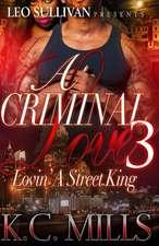 A Criminal Love 3