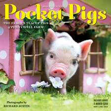 Pocket Pigs Mini Wall Calendar 2019