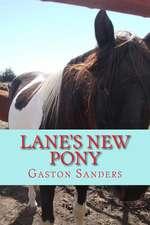 Lane's New Pony