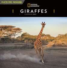 GIRAFFES NATIONAL GEOGRAPHIC SQUARE WALL