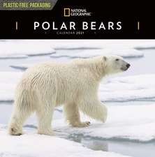 POLAR BEARS NATIONAL GEOGRAPHIC SQUARE W