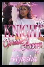 Knight in Chrome Armor 2