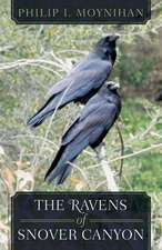 The Ravens of Snover Canyon