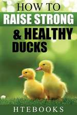 How to Raise Strong & Healthy Ducks