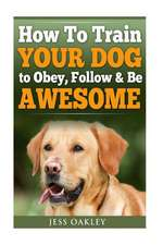 How to Train Your Dog to Obey, Follow & Be Awesome
