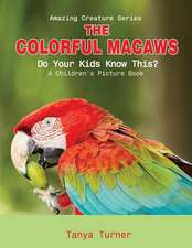 The Colorful Macaws