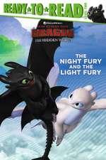 Night Fury and the Light Fury