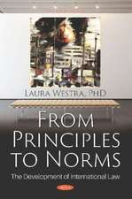 From Principles to Norms: The Development of International Law