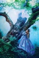 The Hidden Princess Journal