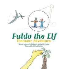 Puldo the Elf
