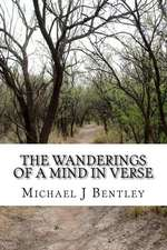 The Wanderings of a Mind in Verse