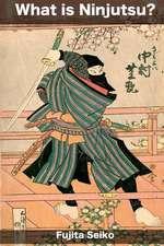 What Is Ninjutsu?
