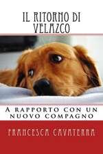 Il Ritorno Di Velazco.