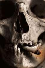 Skull Smoking a Cigarette Journal