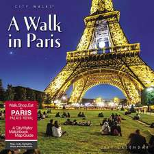 2019 a Walk in Paris Wall Calendar