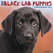 2019 Just Black Lab Puppies Wall Calendar (Dog Breed Calendar)