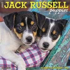 2019 Just Jack Russell Puppies Wall Calendar (Dog Breed Calendar)