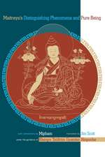 Maitreya's Distinguishing Phenomena and Pure Being:  Notes from a Practitioner's Journey