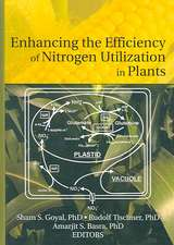Enhancing the Efficiency of Nitrogen Utilization in Plants:  The Sufor Research Project