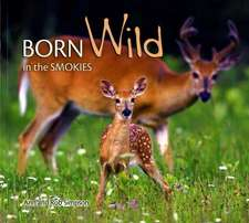 Born Wild in the Smokies