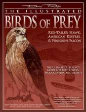 The Illustrated Birds of Prey:  The Ultimate Reference Guide for Bird Lovers, Woodcarvers, and Ar