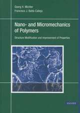 Nano- And Micromechanics of Polymers:  Structure Modification and Improvement of Properties