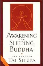 Awakening the Sleeping Buddha:  Berkeley, LSD, Two Zen Masters, and Life on the Dharma Trail