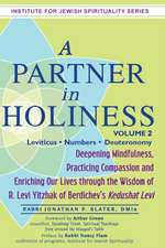 A   Partner in Holiness, Volume 2:  Deepening Mindfulness, Practicing Compassion and Enriching Our Lives Through the Wisdom of R. Levi Yitzhak of Berdi